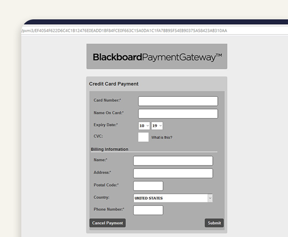 Step 5 - Fill in Credit Card Details - BuzzCard eAccounts Web Portal Page